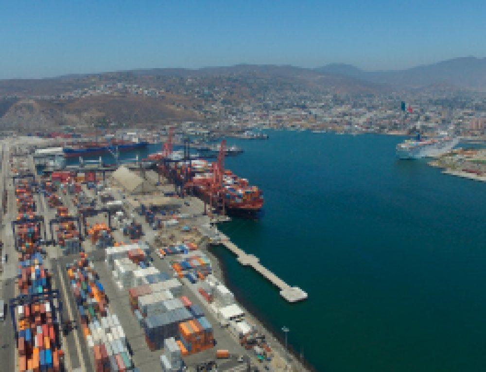 Suspenderá importación este año en aduana marítima